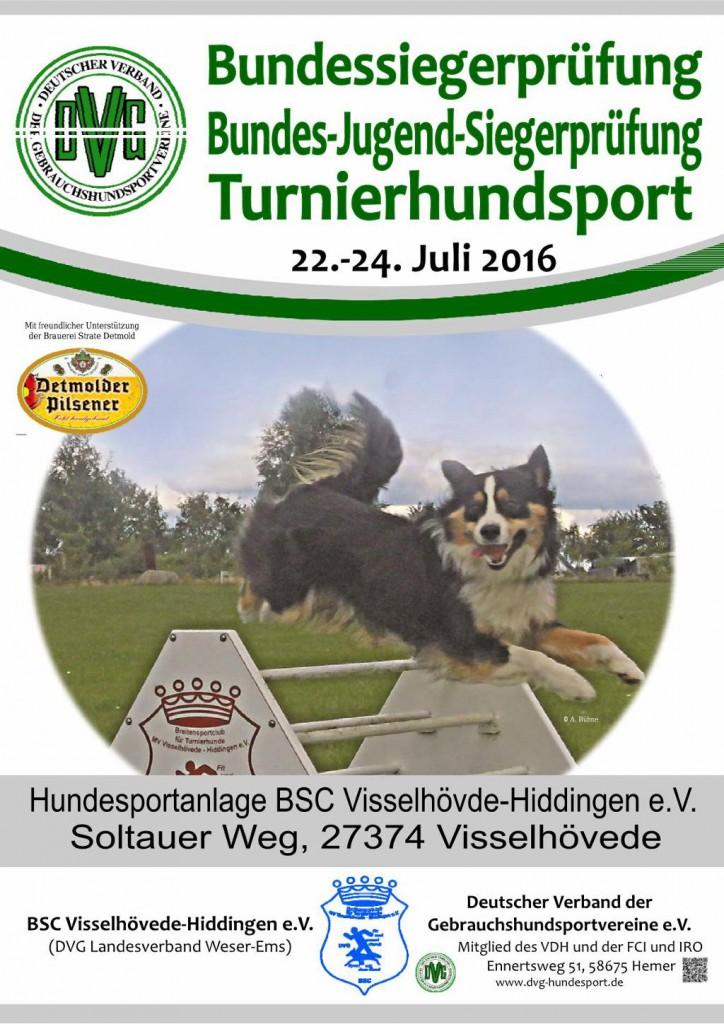 VDH-DM THS @ BPSV Hof e.V. | Hof | Bayern | Deutschland